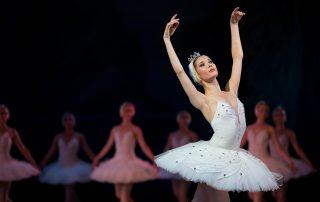 Die kleine Meerjungfrau Ballett Tickets, Preise, Adresse und Öffnungszeiten
